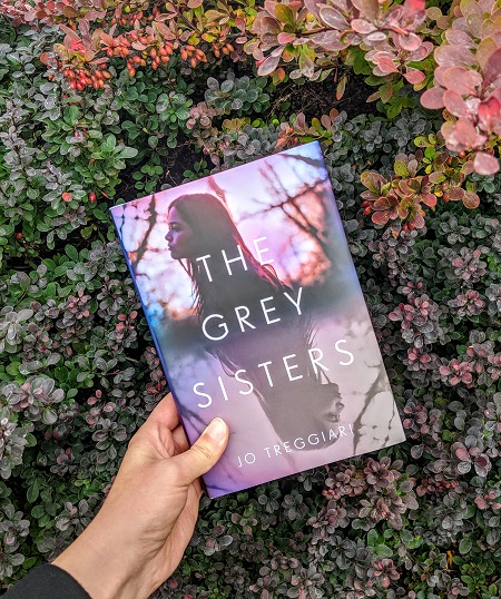 The Grey Sisters by Jo Treggiari